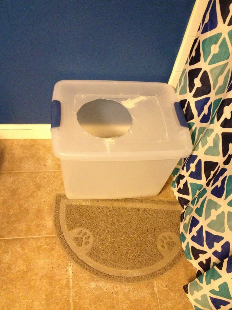 DIY Top Entry Litter Box - Charleston Crafted