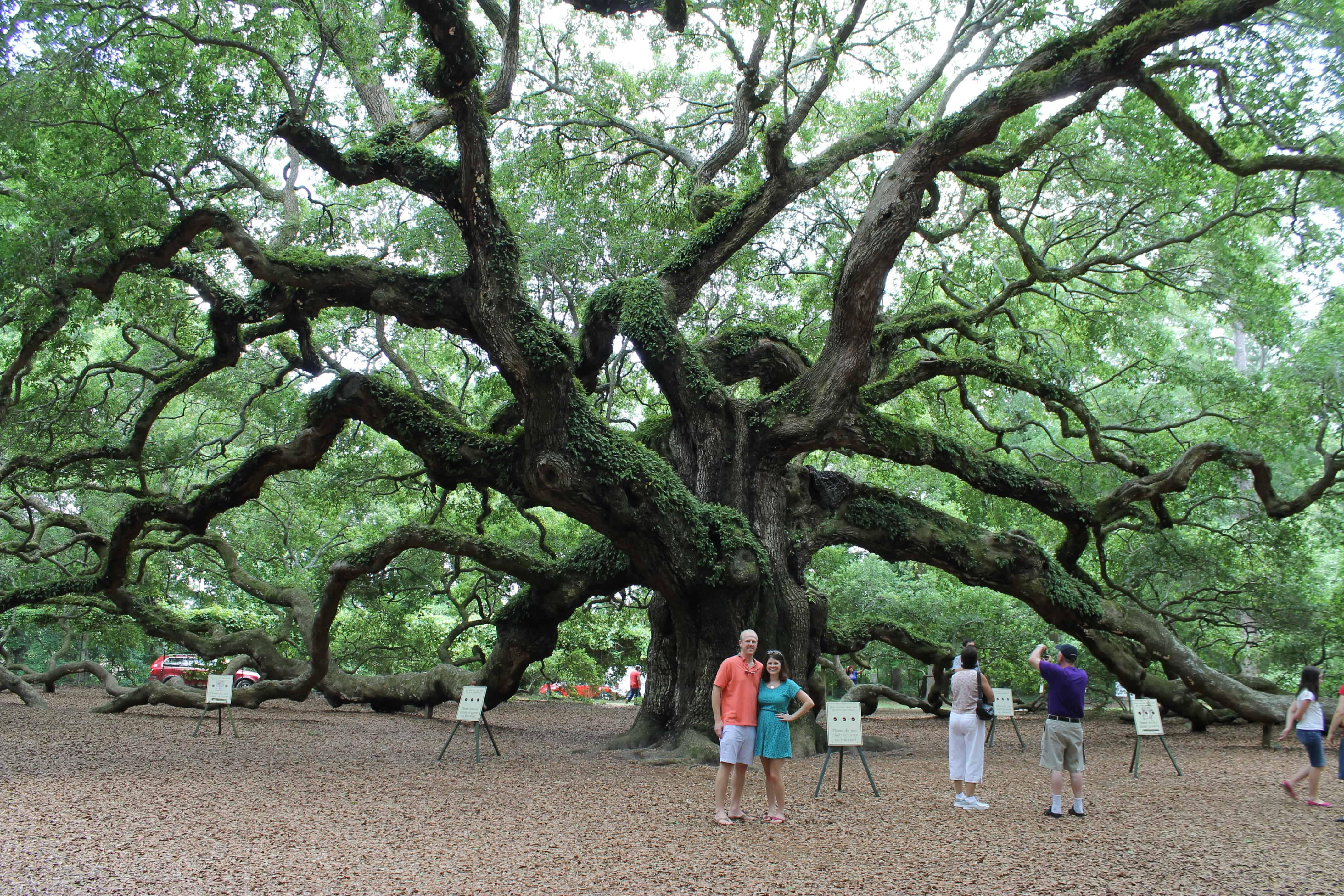 Best Nature Photography South Carolina
