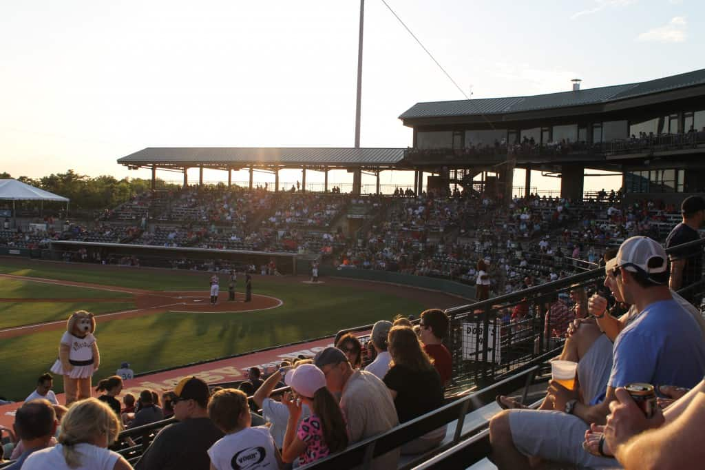 Charleston Riverdogs Baseball - Charleston Crafted