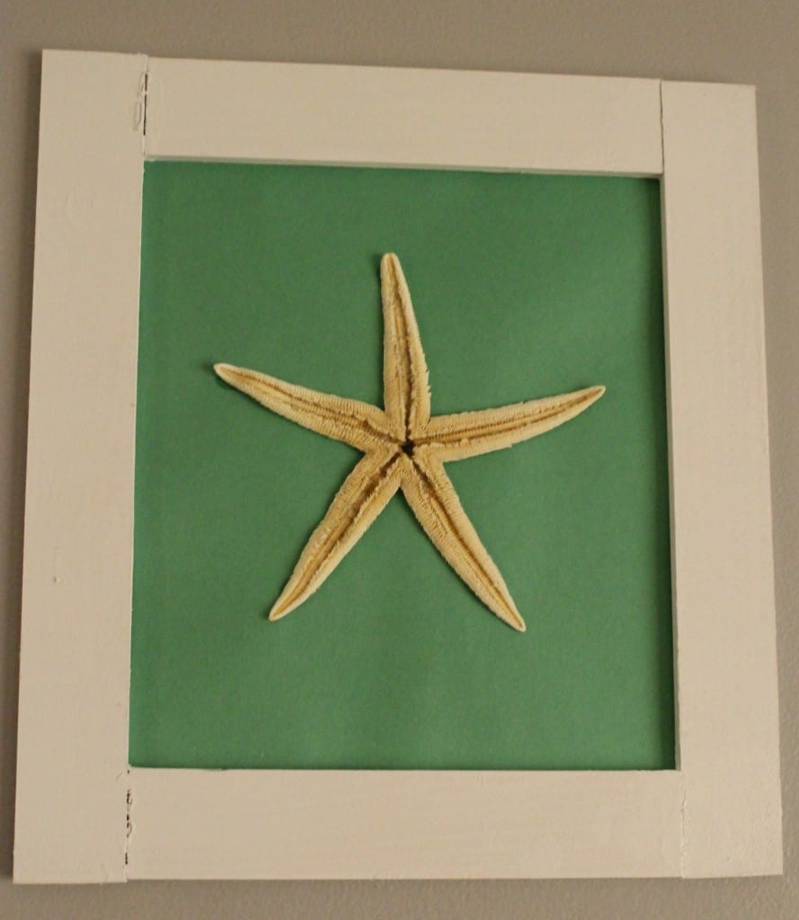 Frame a Starfish - Charleston Crafted