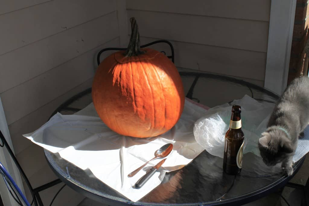 Carving Pumpkins - Charleston Crafted
