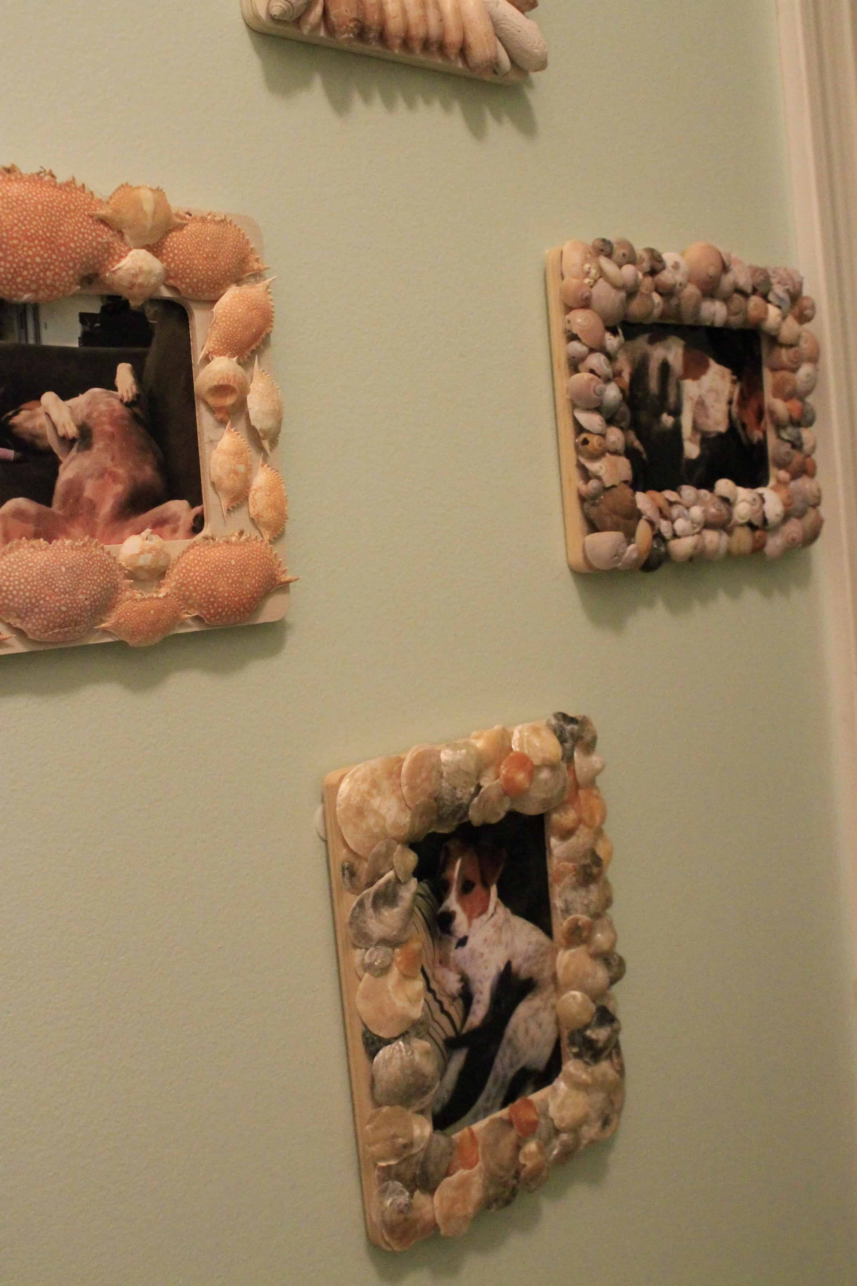 Sea Shell Frames (& Another Gallery Wall!)