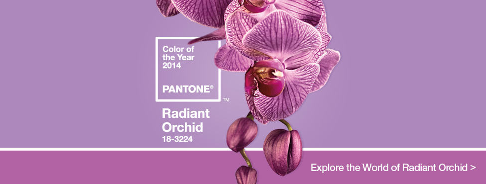 Pantone Color of the Year: Radiant Orchid – Do you Dig it?