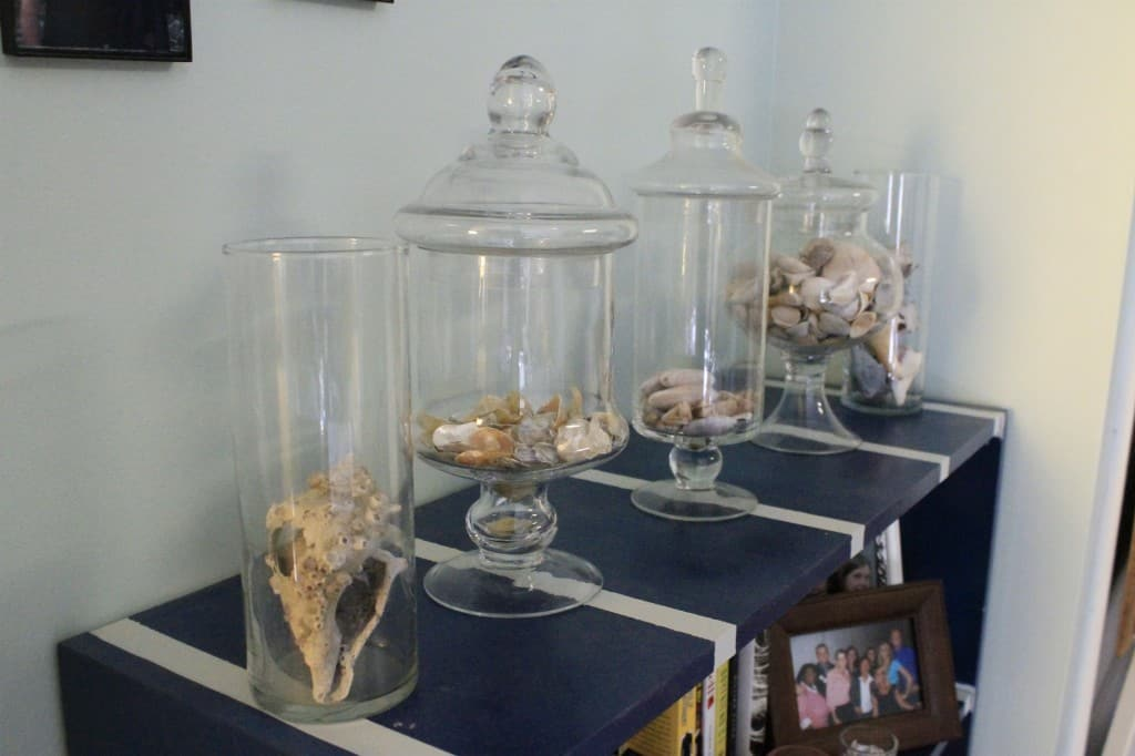 Seashell Display Shelf - Charleston Crafted