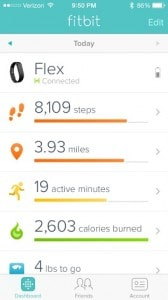 Fitbit Flex Review - Charleston Crafted