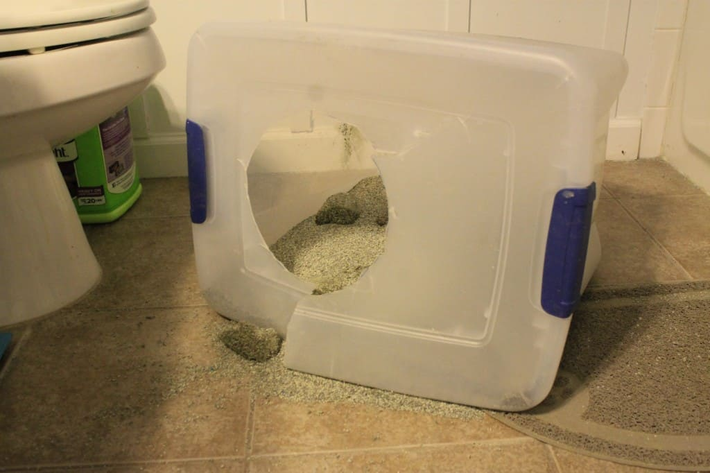 Make a Litter Box Unflippable - Charleston Crafted