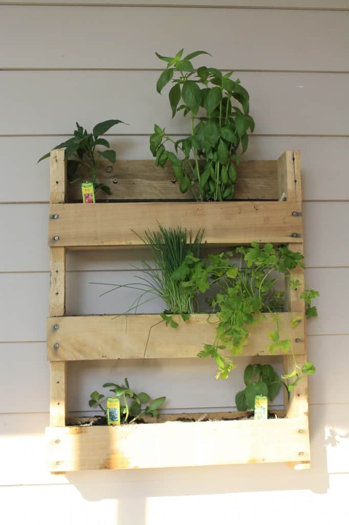 Vertical Herb Garden - Charleston Crafted