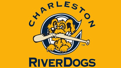 Tips and Tricks for a Charleston RiverDogs Game - Charleston Crafted