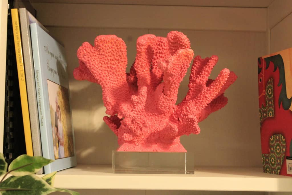 Spray Painting Coral - Charleston Crafted