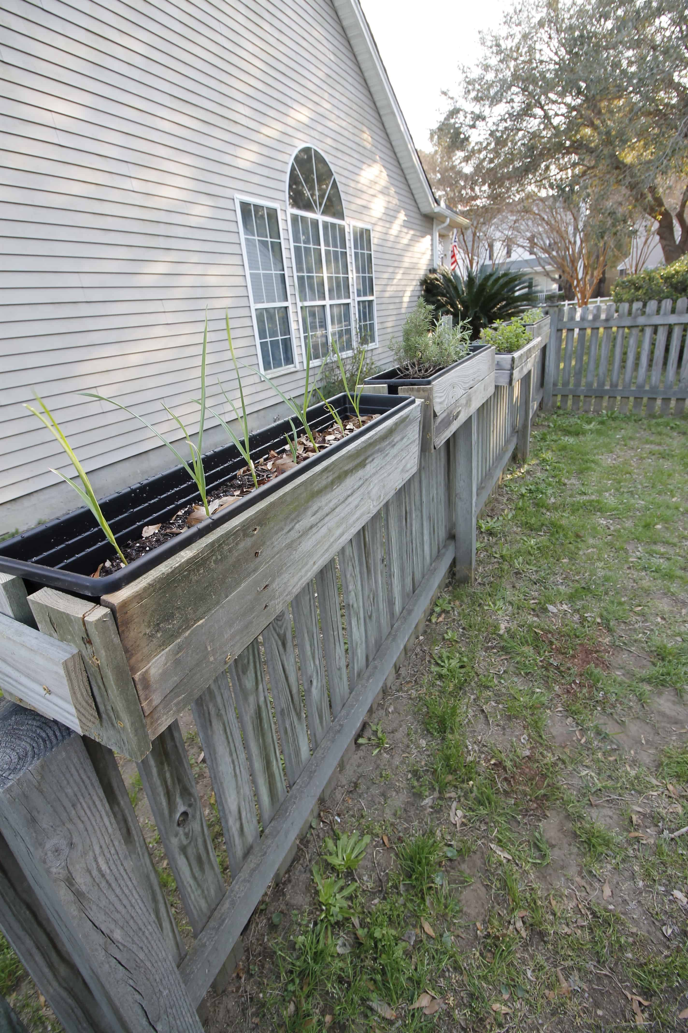 DIY Hanging Fence Planters