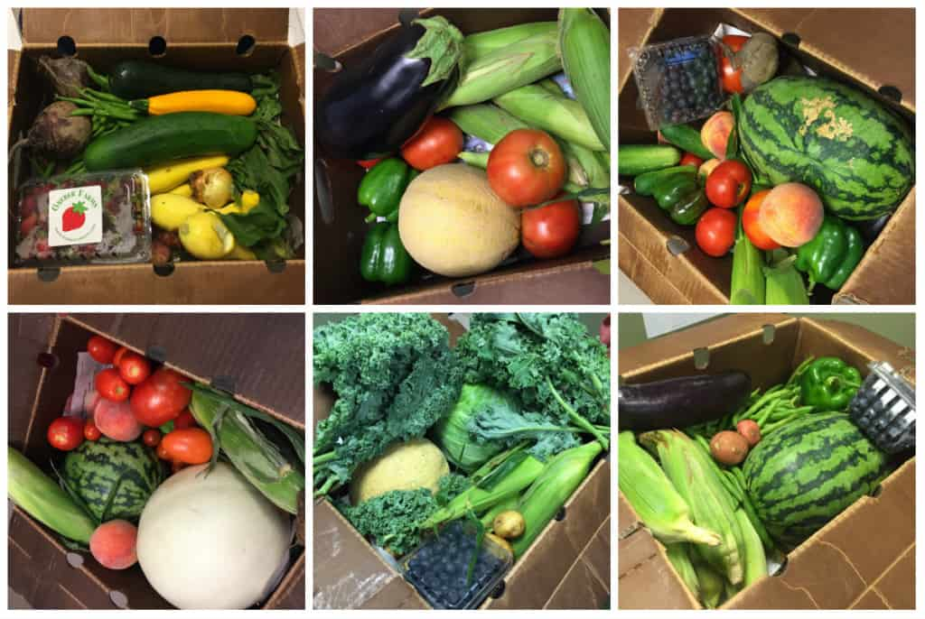 CSA Produce Box Review - Charleston Crafted