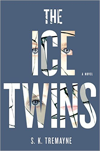 Ice Twins Book Review - Charleston Crafted