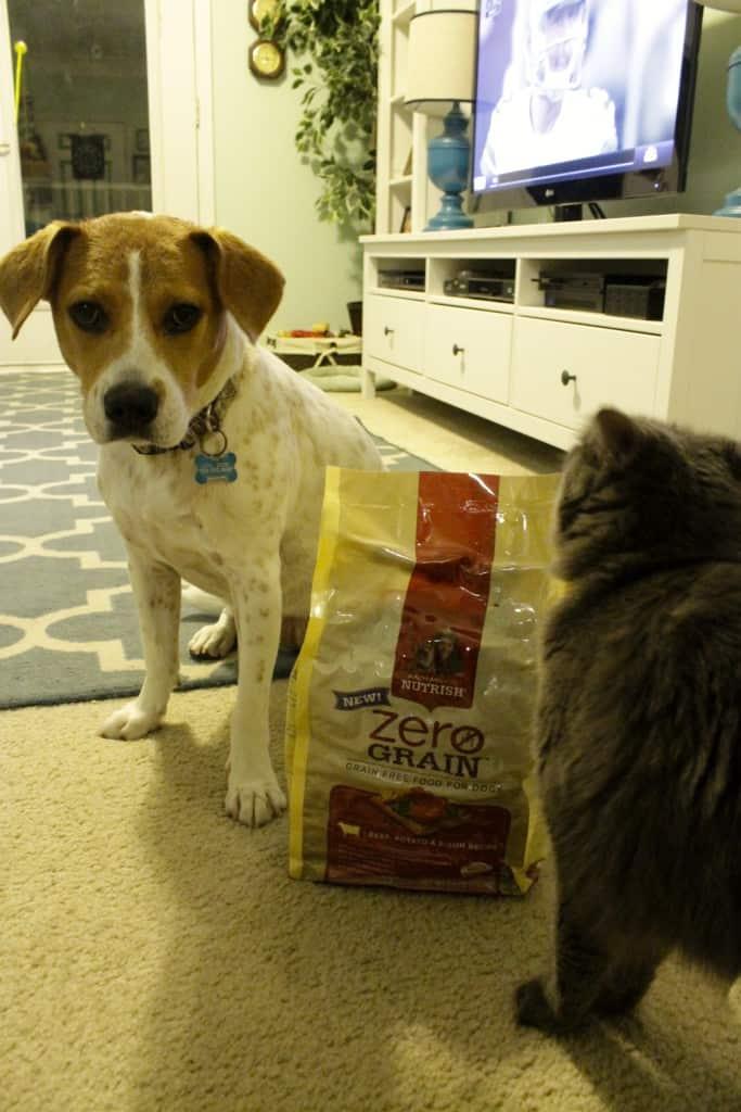 Rachael Ray Nutrish Dog Food - Charleston Crafted