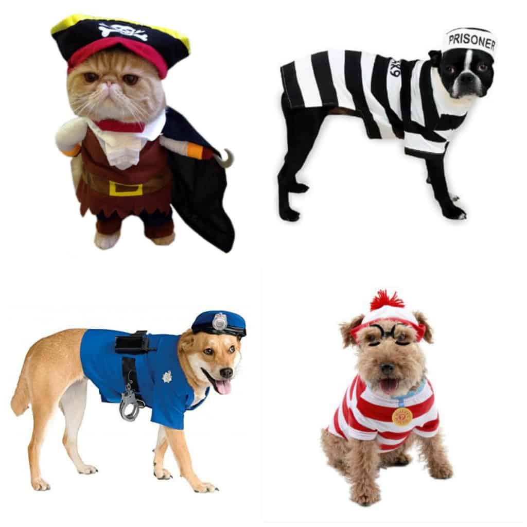 pets as people halloween costumes