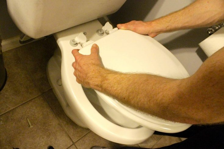 How to replace a toilet seat - Charleston Crafted