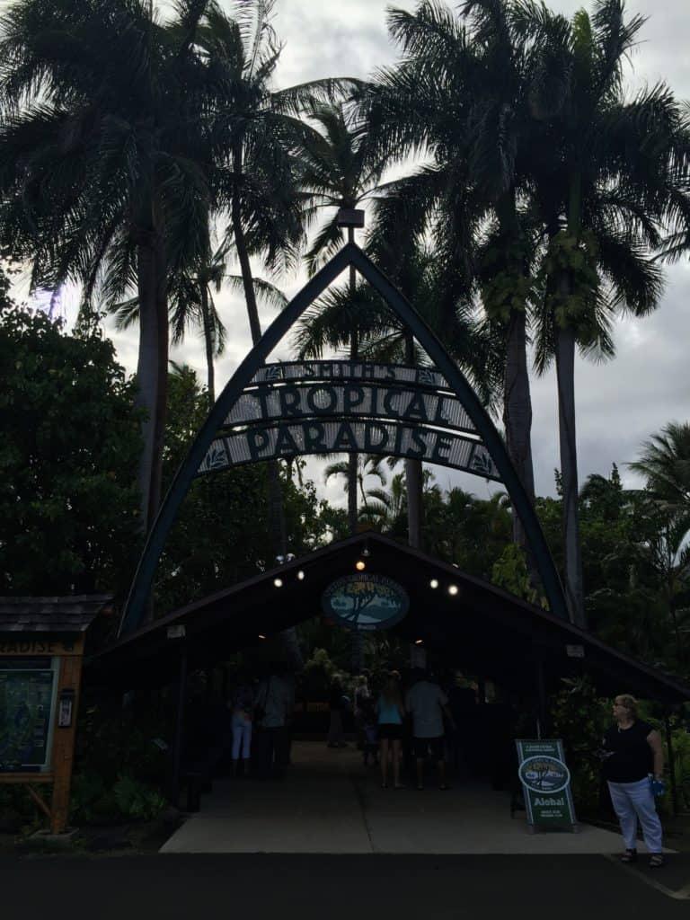 Kauai Day Five - Our Anniversary!