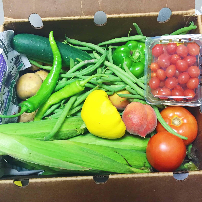 Spring Summer CSA Gruber Farms Recap - Charleston Crafted