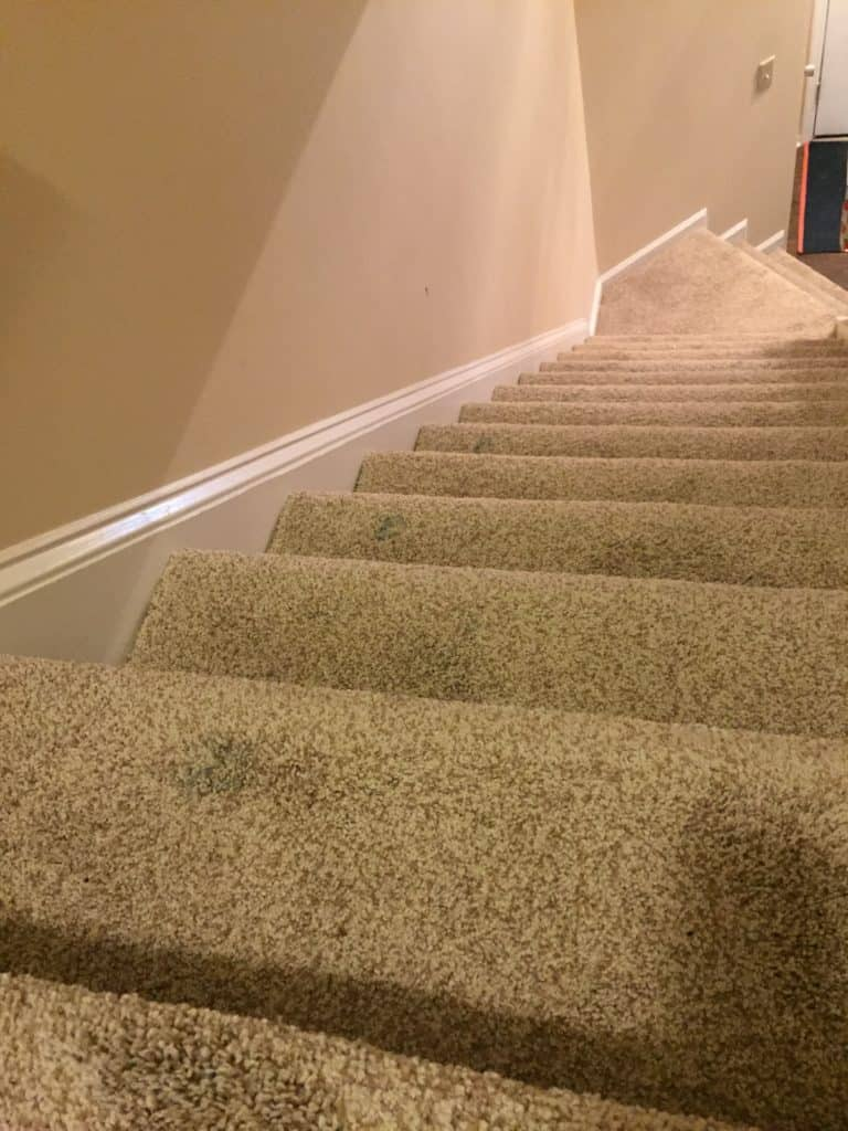 how to get dried paint out of carpet - charleston crafted