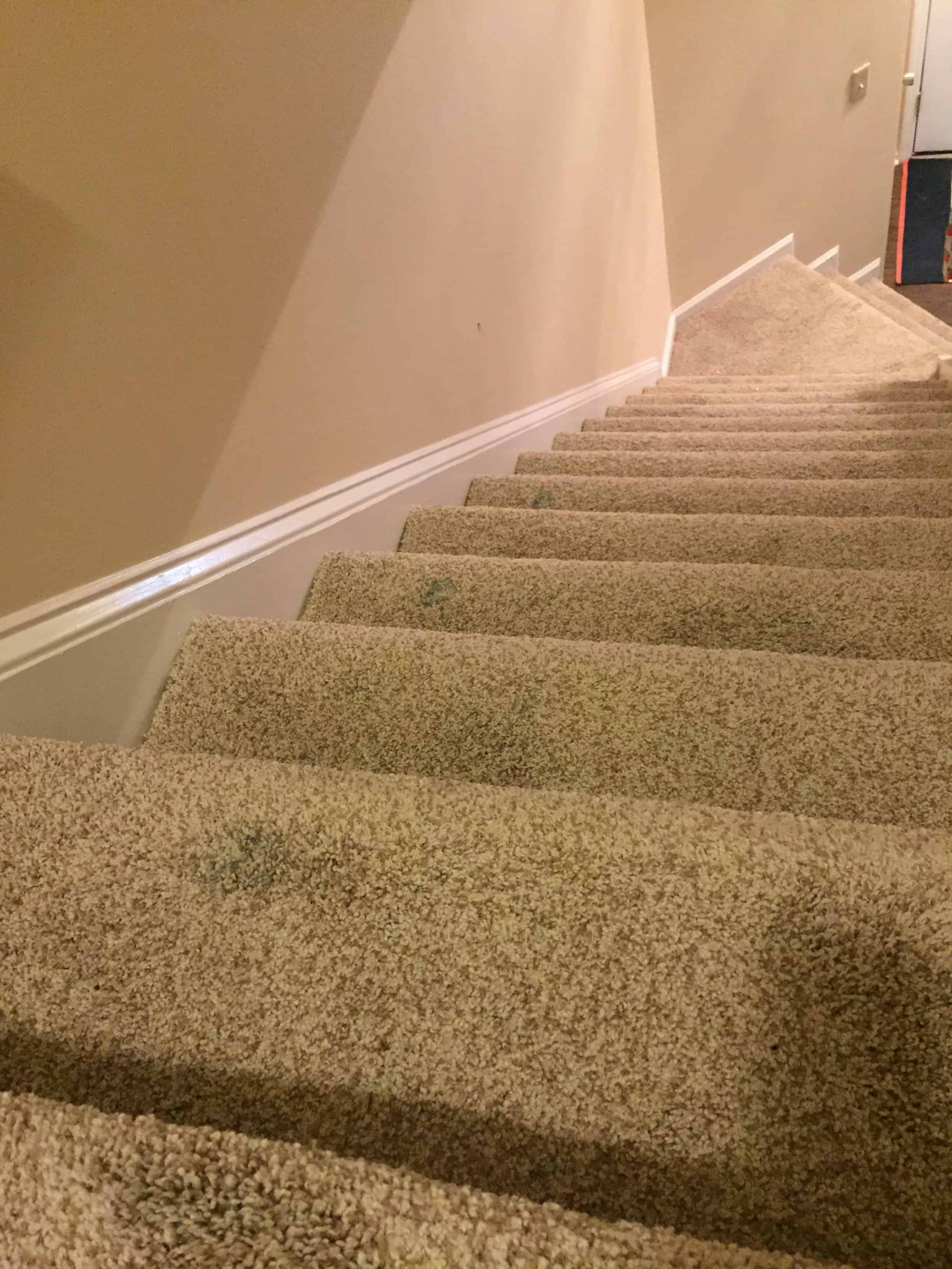 Homeowner Fail How To Get Dried Paint Off Of Carpet