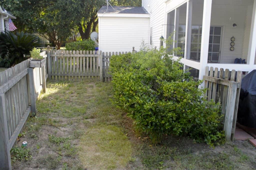 Initial Yard Plan - Charleston Crafted