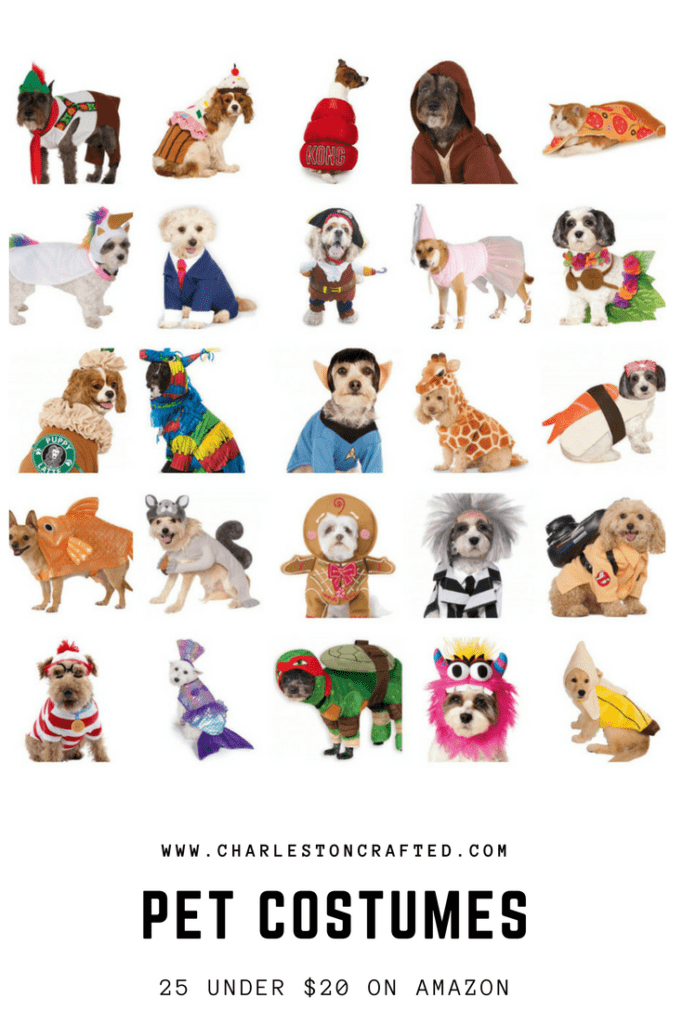 25 pet costumers under $20 cheap on Amazon - perfect for your cat or dog who likes to be hilarious on halloween - via Charleston Crafted