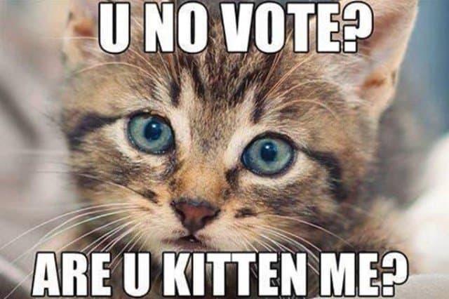 vote-meme
