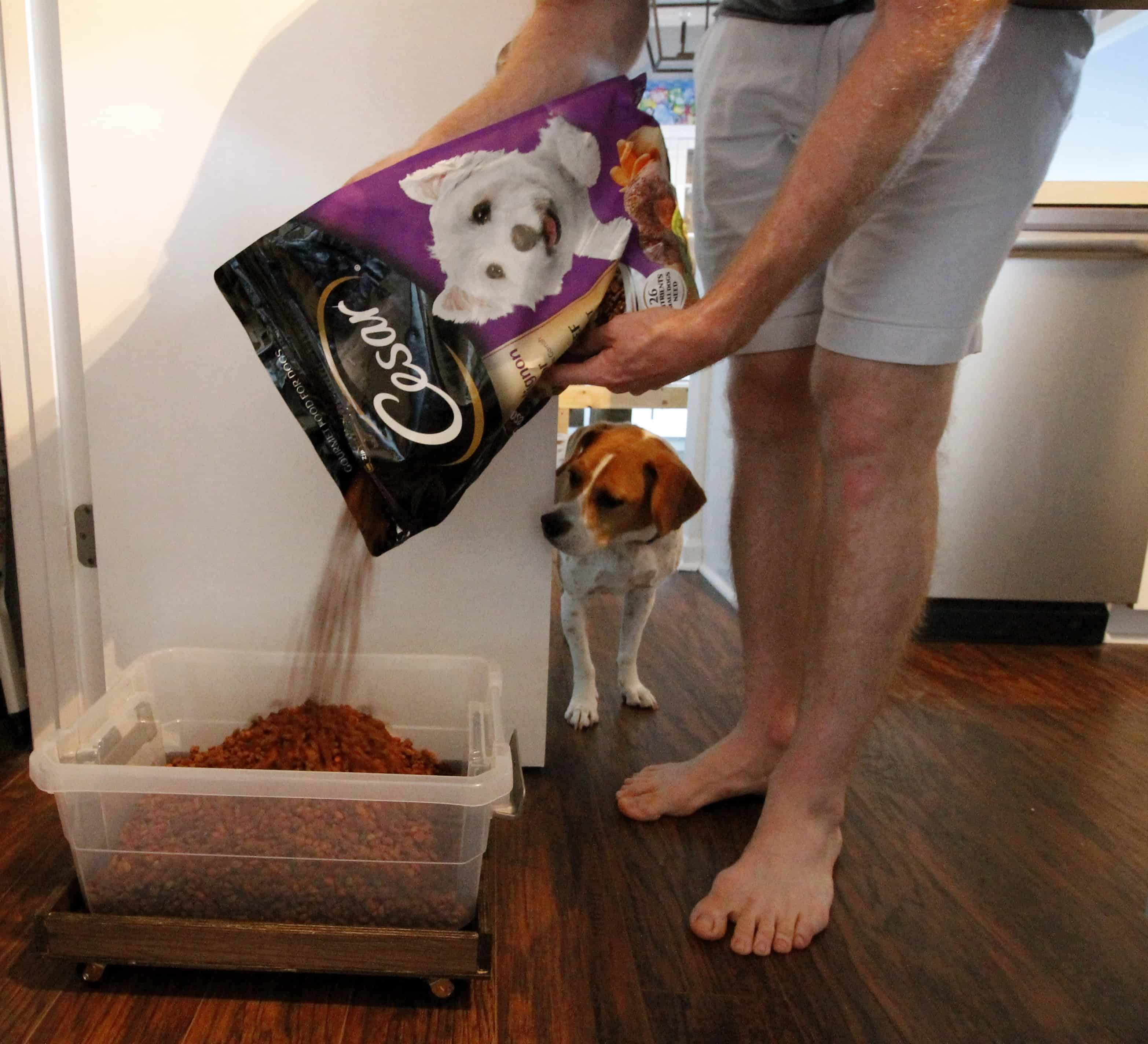 Diy Rolling Dog Food Container Charleston Crafted