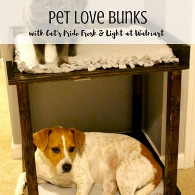 Pet Love Bunks with Cat's Pride - Charleston Crafted