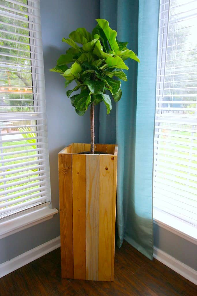 Diy Elevated Plant Stand For Fiddle Leaf Figs And Other