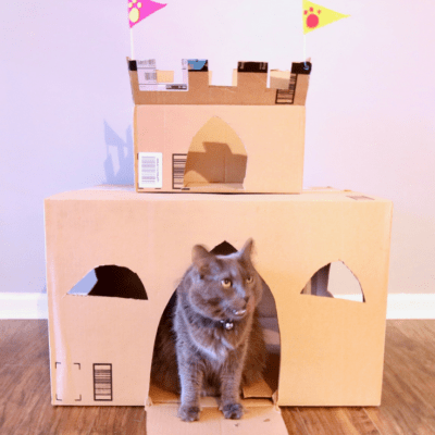 How to Build a DIY Cardboard Cat Castle
