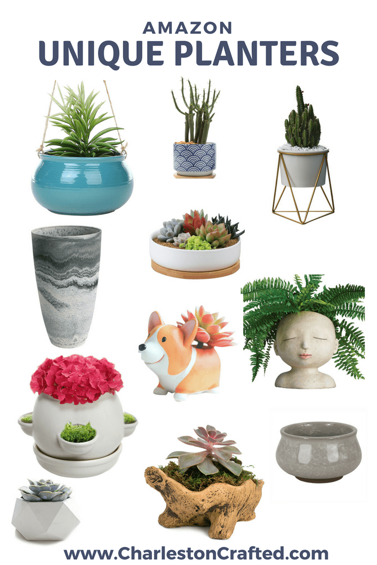 11 Unique Planters from Amazon via Charleston Crafted