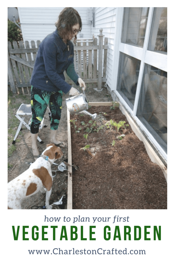 How to Plan a Vegetable Garden - Beginner Raised Garden Bed Layout Ideas via Charleston Crafted