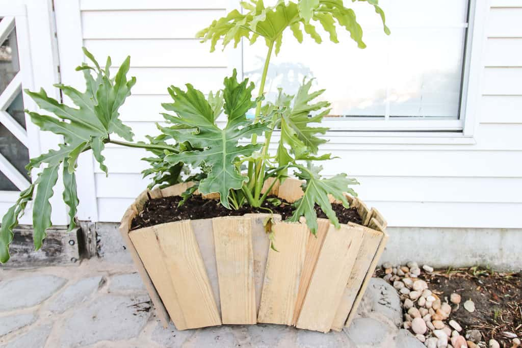 Scalloped Pallet Wood Planter - Charleston Crafted