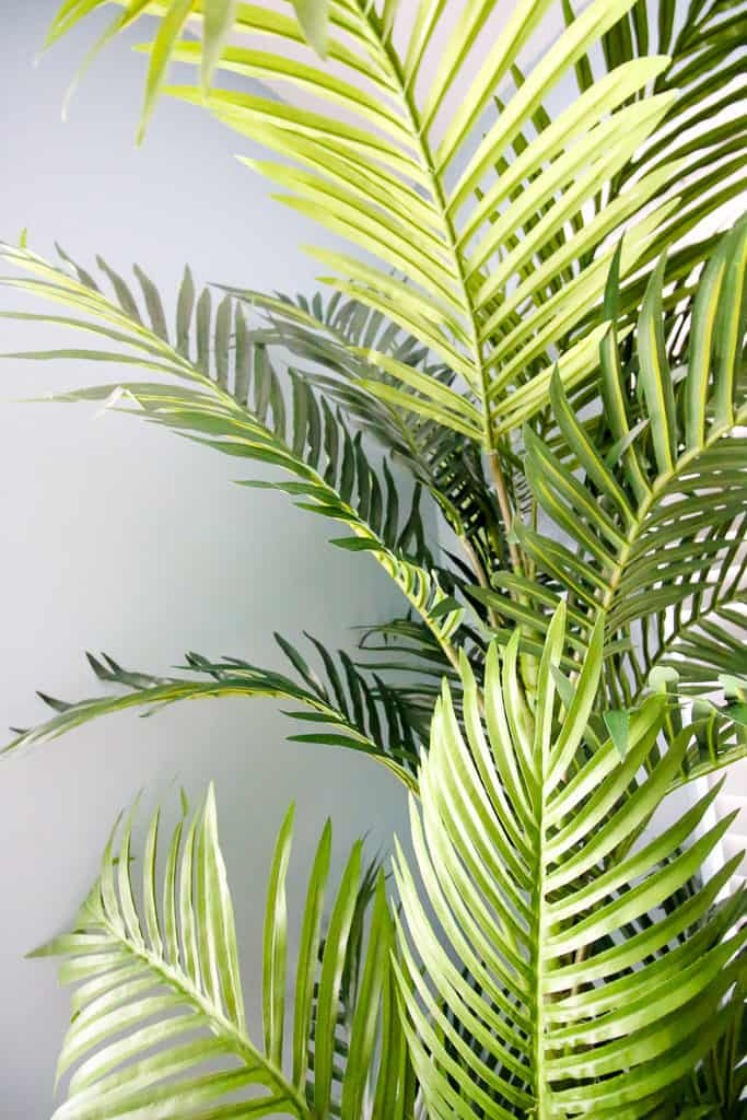 When to Give Up on Live Plants and Buy a Fake Tree - from Amazon via Charleston Crafted