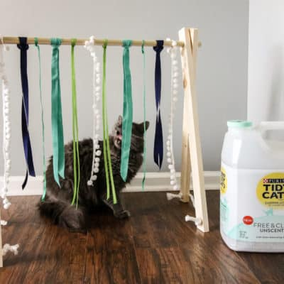 DIY Cat Play Gym