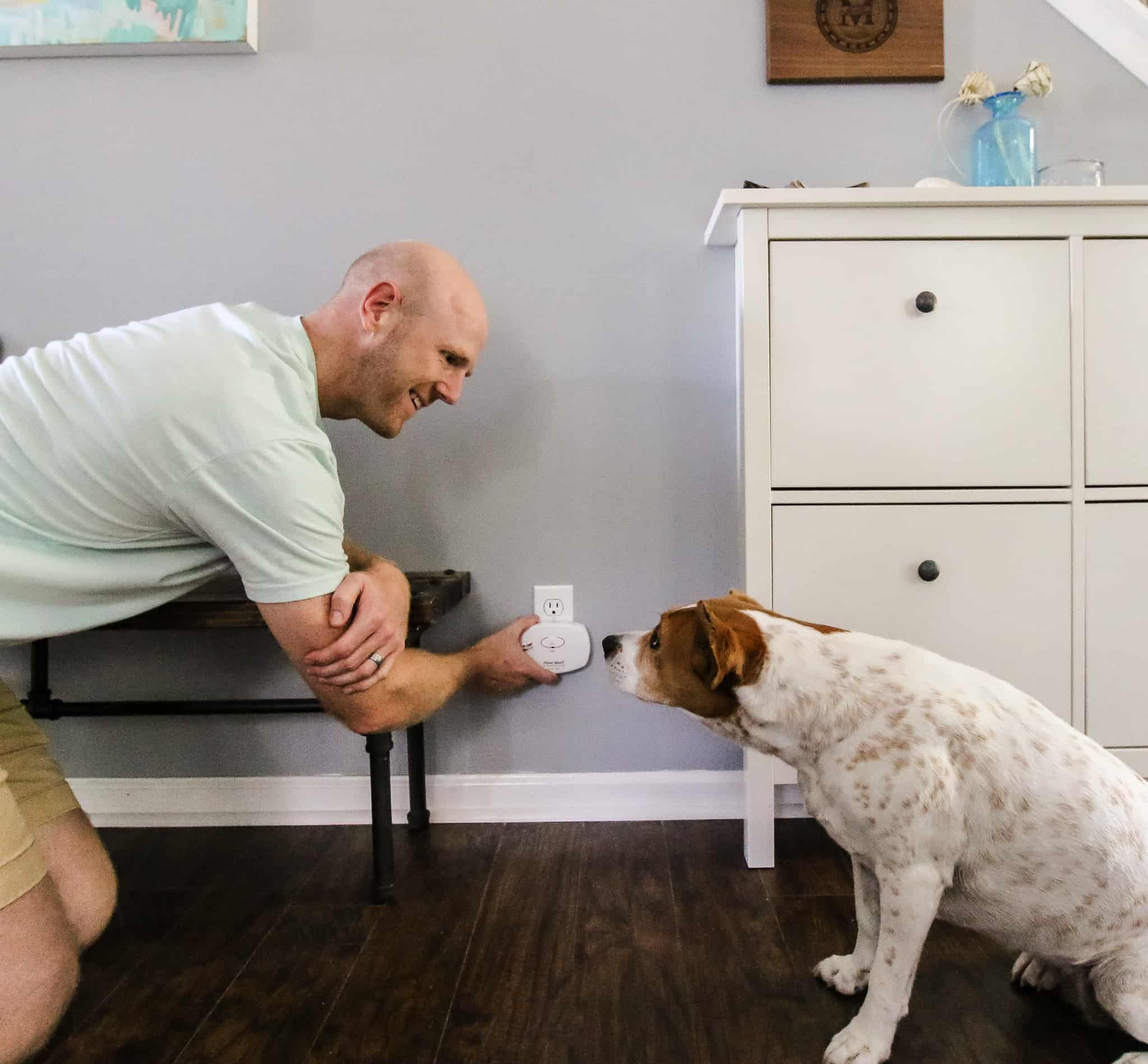 Why you Need Carbon Monoxide Detectors for Your Home via Charleston Crafted