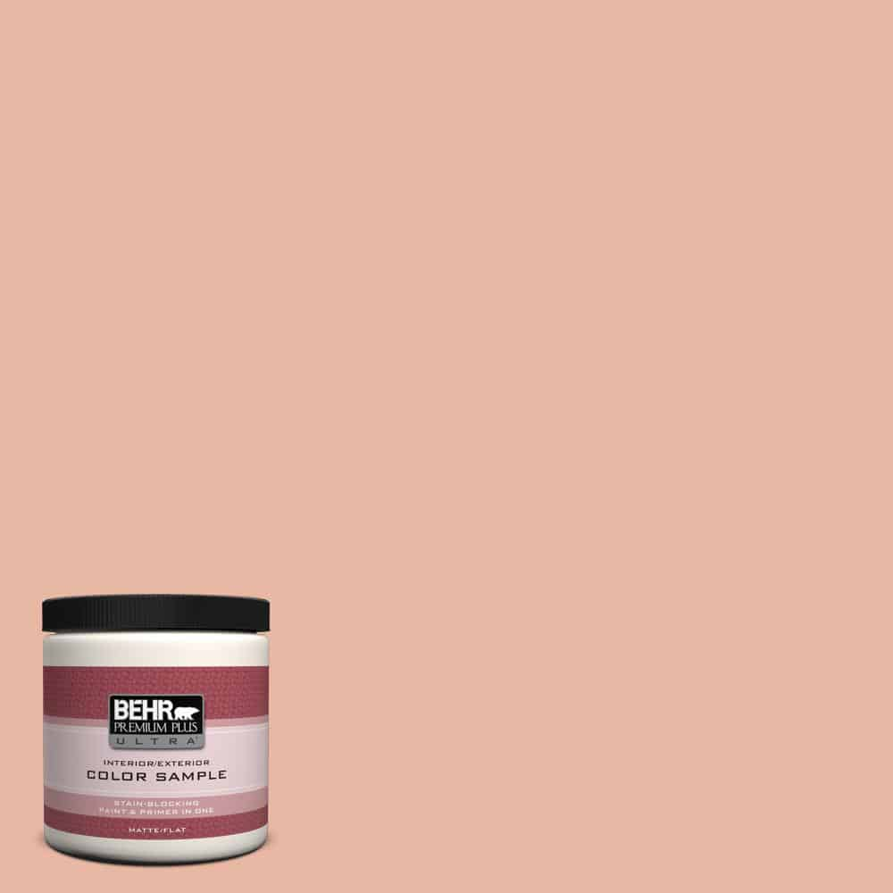 pink abalone behr