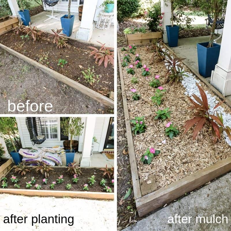 planters before and after