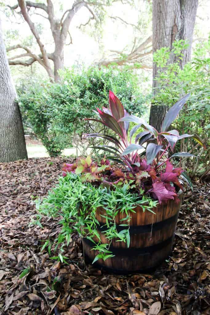 how to style a whiskey barrel planter