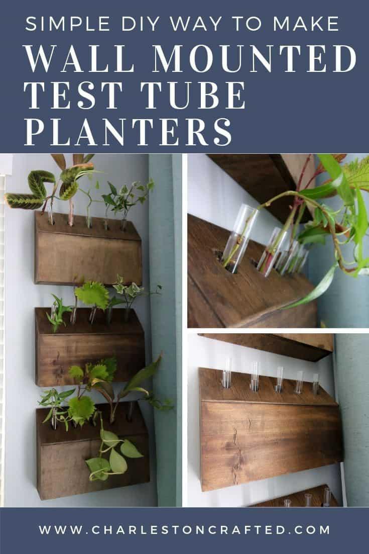 DIY wall mounted test tube planter propagation station