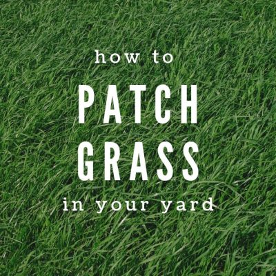 How to patch grass
