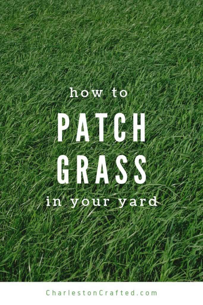 how to patch grass in your yard