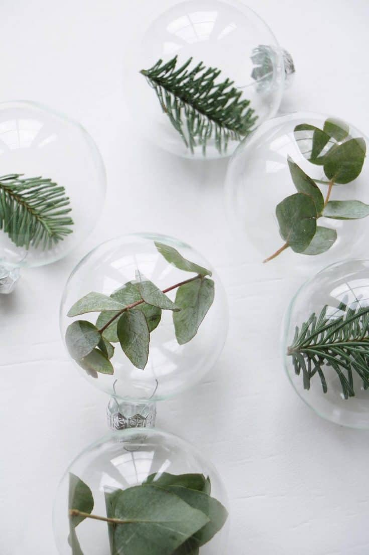 DIY plant ornament balls
