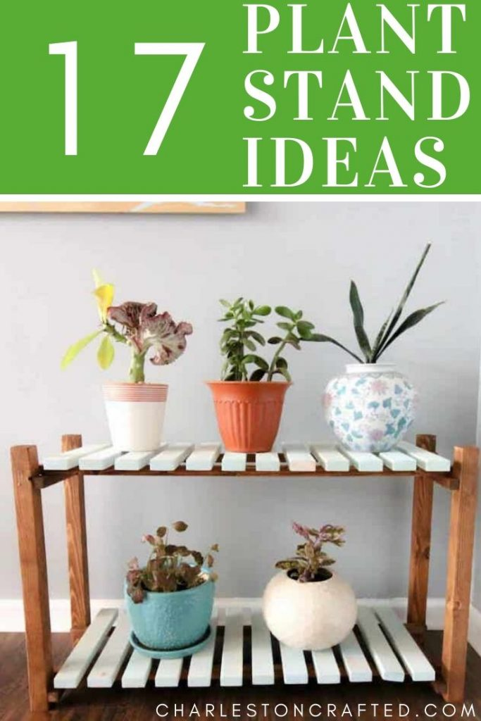 17 DIY Plant Stands You Can Make This Weekend