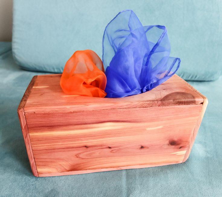 DIY Magic Tissue Box - Charleston Crafted