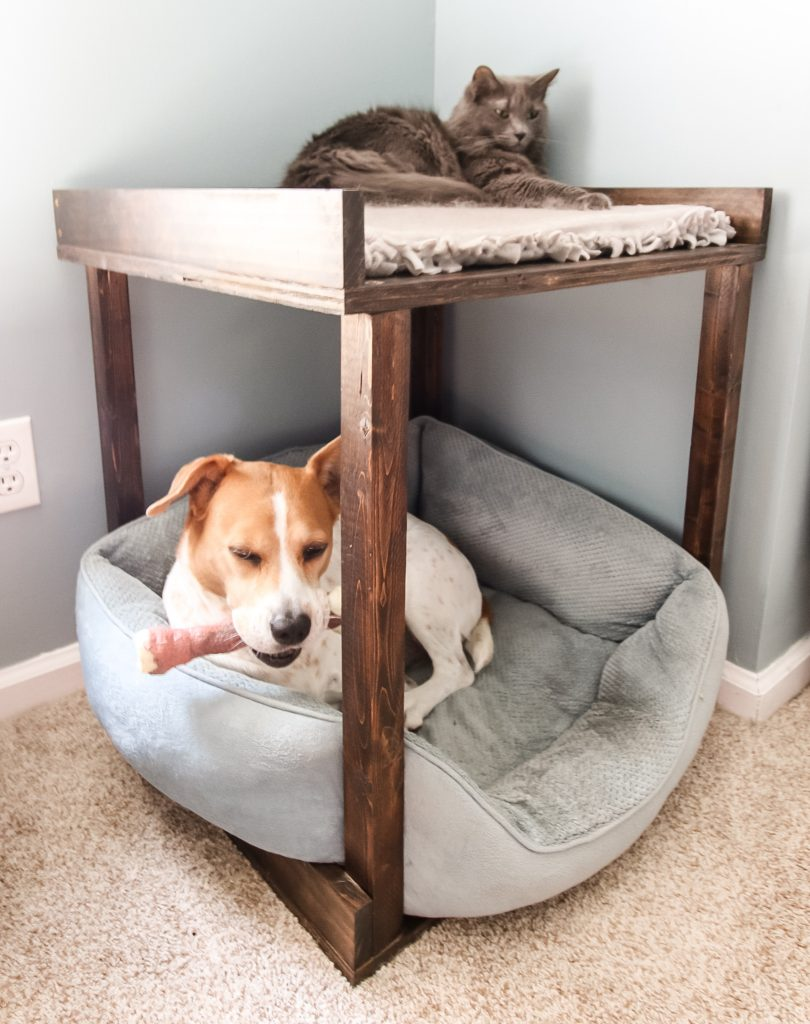 DIY Pet Bunk Bed