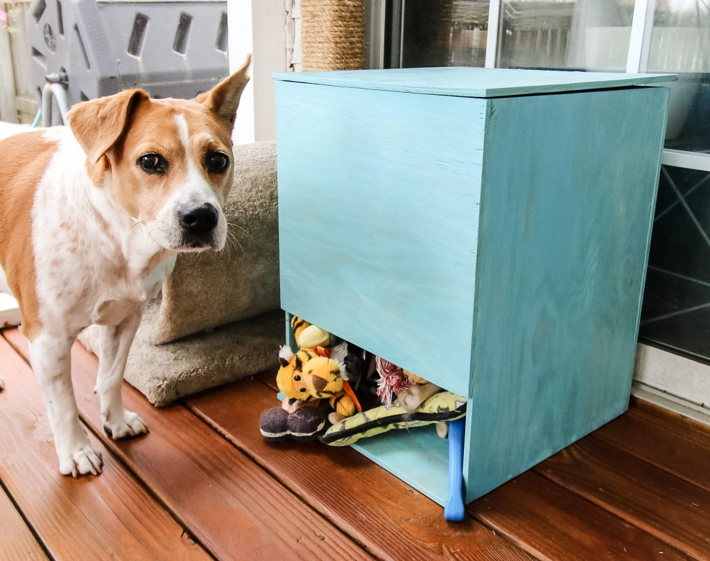DIY Dog Toy Storage Bin - Charleston Crafted