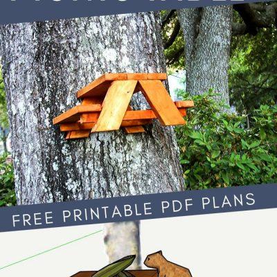 How to make a squirrel picnic table – free PDF plans!