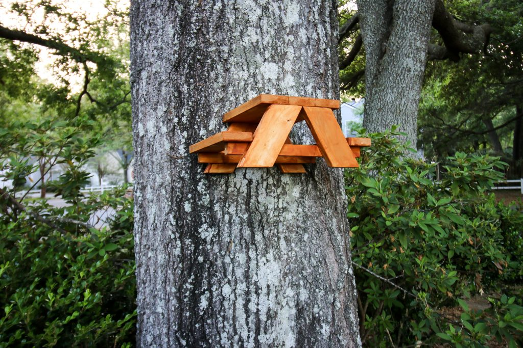 how to build a squirrel picnic table - free PDF plans