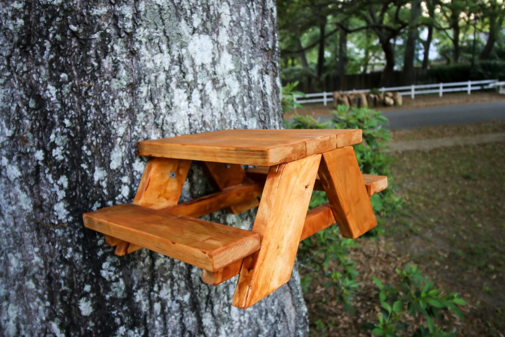 How to make a squirrel picnic table - free PDF plans!